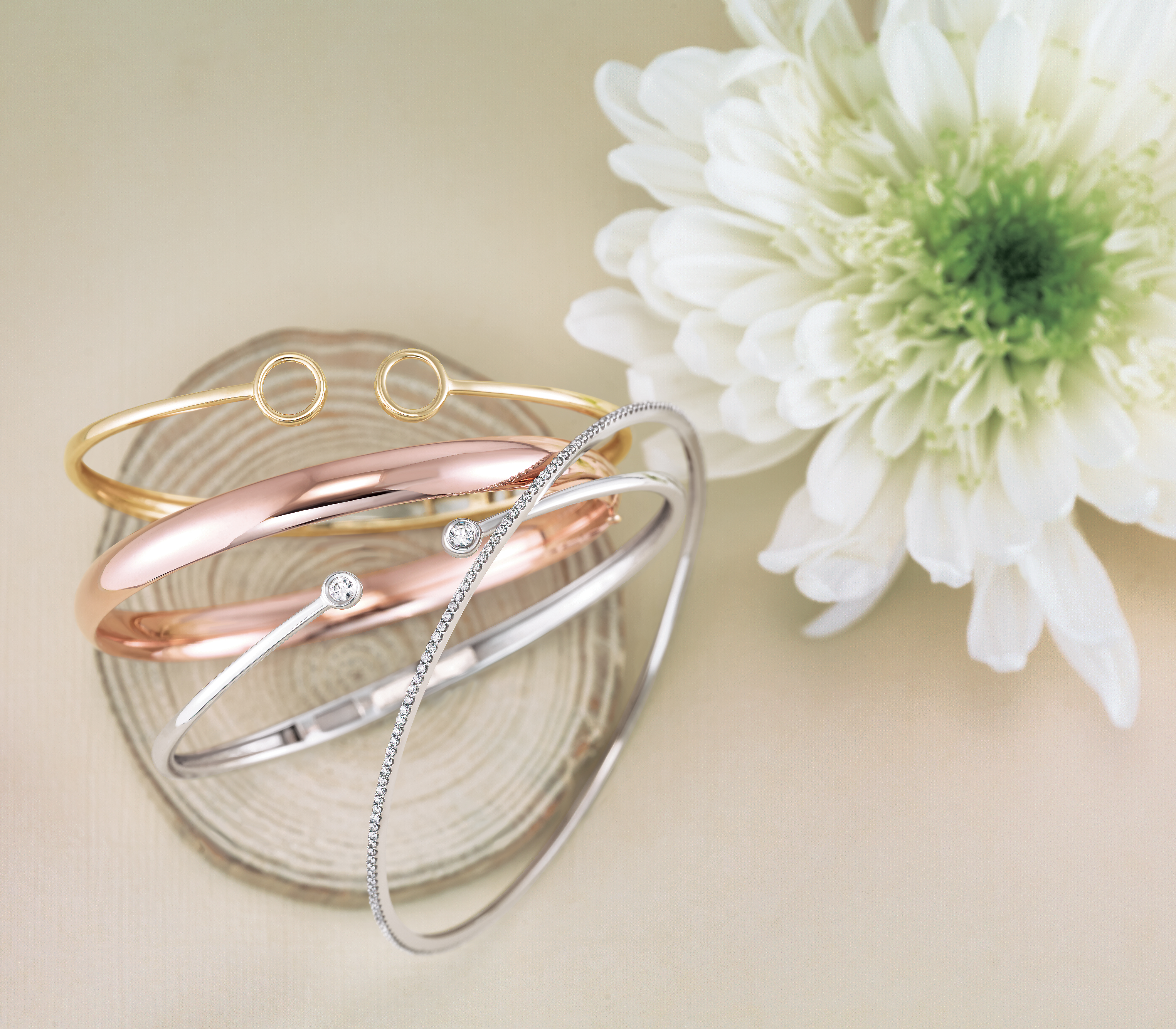 Website Bracelets